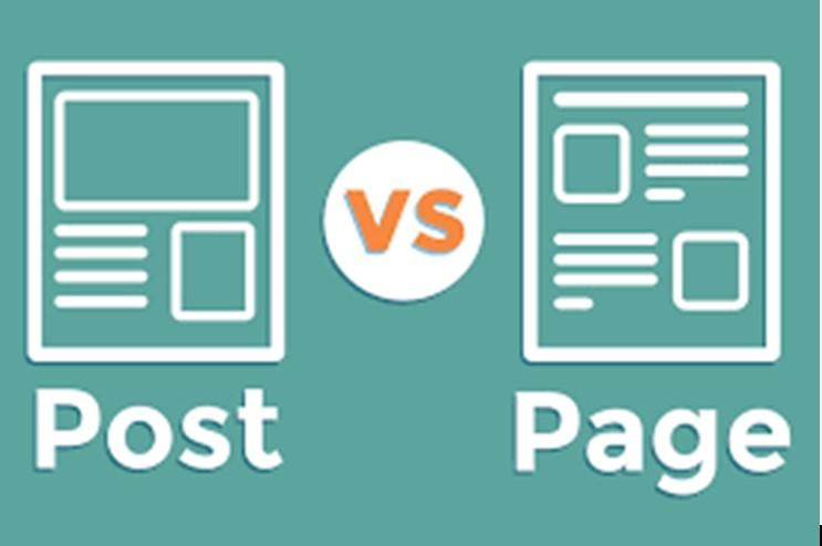 Perbedaan Dasar Antara Blog Dengan Website